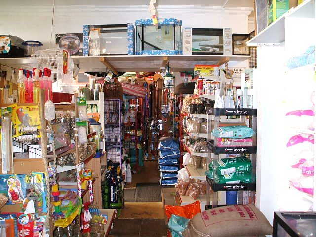 Pet Shop in Marlborough For Sale